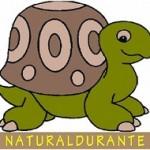 Naturaldurante, progetto di educazione alla sostenibilità in Emilia Romagna