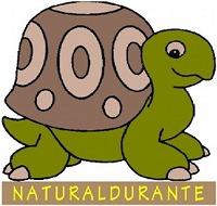 Logo-naturaldurante-bologna