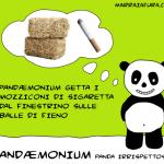 Pandaemonium e la campagna