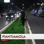 Il Guerrilla Gardening in Italia. La GoodNews di Report del 6 dicembre 2009