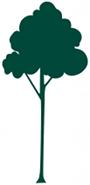 tree-ybl