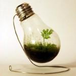 <b>Cara vecchia lampadina… </b><br>tante idee per riutilizzarla quando non illumina più