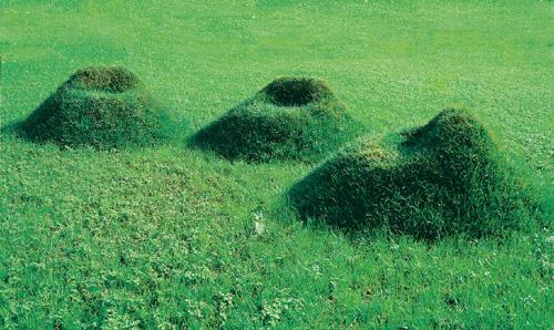 Una poltrona di terra ed erba le sedute diventano - Quando seminare erba giardino ...