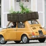 <b>BacSac: la natura è nella borsa. </b><br/>Il vaso geotessile, leggero e riciclabile per chi non sa rinunciare al verde