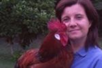 Adotta una gallina