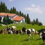 Turismo sostenibile. <br />L'indagine sull'eco-compatibilità degli Agriturismo in Italia