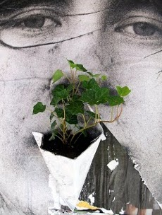 Poster_Pockets_Plants_MaF_03_faccia1