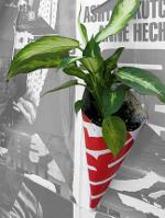 Poster_Pockets_Plants_MaF_08