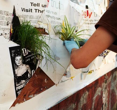 Poster_Pockets_Plants_MaF_istruzioni-01