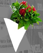 guerrilla-gardening_2