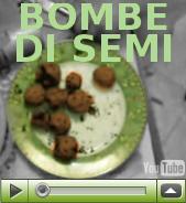 bombe_di_semi_3