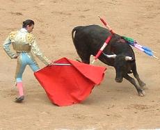 corrida_2