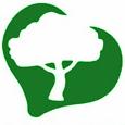 bar-il-pino-logo-verde