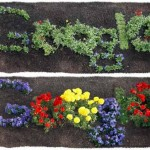 <b>Giorno della Terra (Earth Day).</b> Anche Google lo festeggia e come ogni anno ci regala un <i>doodle</i>