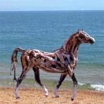 Sculture con i legni lasciati dal mare