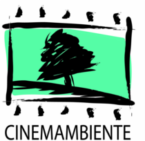 cinemambiente-2013