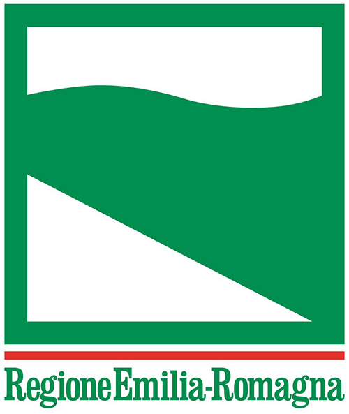 E-R-Partecipazione-2013