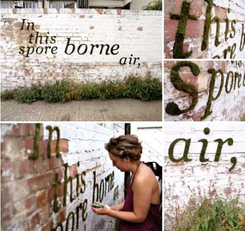 anna-graffiti
