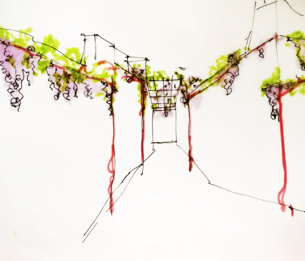 Disegno delle pergole dell'architetto Roberto Virdis